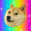 Doge Network Favicon